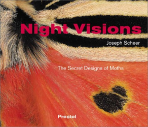 Joseph Scheer: Night Visions: The Secret Designs of Moths