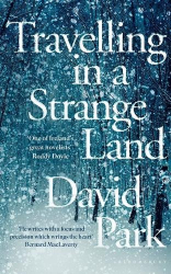 David Park: Travelling in a Strange Land