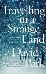 David Park: Travelling in a Strange Land