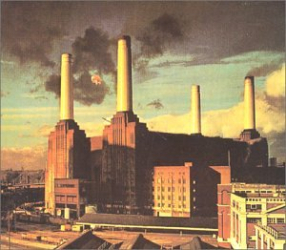 Pink Floyd - PIG (THREE DEFFRENT ONES)