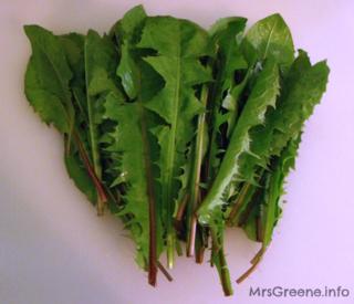 Dandelion-greens1