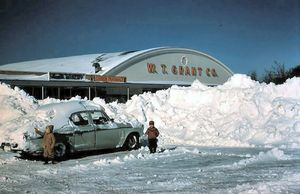 """""""I hope they have some snow shovels in stock."""""""