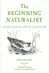 Gale Lawrence: The Beginning Naturalist: Weekly Encounters With the Natural World