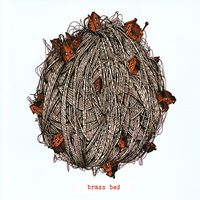 Brass Bed-Polar Bird