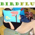 Birdflu - Bird Flu