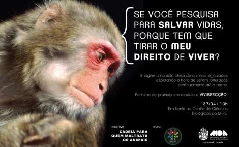 Uso de animales vivos (5)