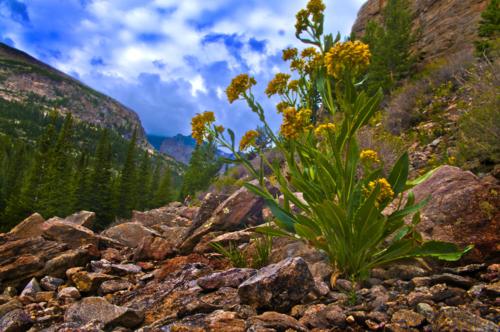 Best Colorado Springs Attractions