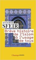 SFEIR ISLAM 512tEHaHQzL._SX302_BO1,204,203,200_