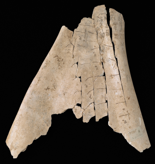 Divination cracks Shang dynasty oracle bone, c. 1600 to 1050 BC Or.7694/1535