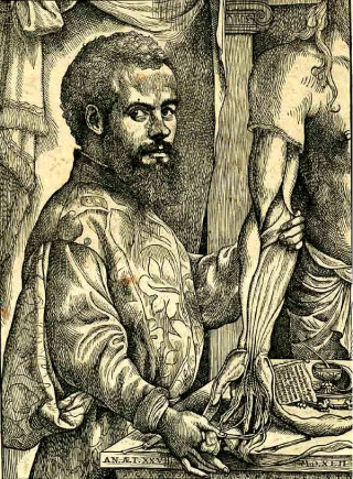 An image shows a bearded man in rich Renaissance clothing holding the arm of a flayed corpse and demonstrating the muscelature.
