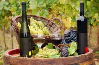 St. Josef's Winery