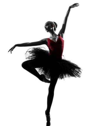 2015 International Ballet Festival in Miami