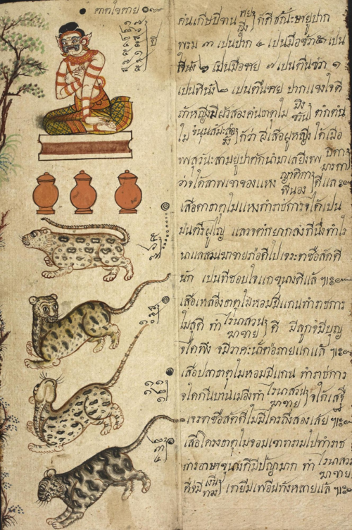 British Library, Or.4830, folio 6, showing the horoscope page for people born in the year of the tiger.