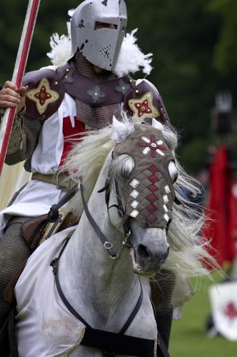 Medieval Times in Atlanta