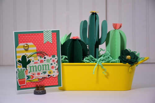 "Celebrating Motherhood with this card and cactus gift by Tya Smith for #EchoParkPaper with the ""Just Be You"" Collection"