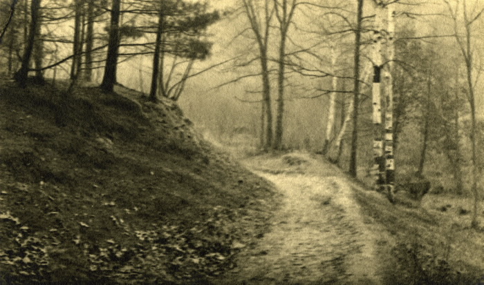 Old photo of a path in a wooded area